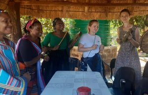 Nurturing a partnership with Hlayisani Traditional Health Practitioners Association at Maviligwe village